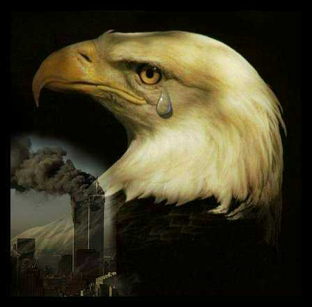 Eagle Crying Photo http://www.navycthistory.com/tragedy_photos_for_09-11-01.html